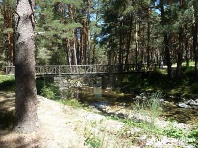 Pesquerías Reales y Fuentes de La Granja;asociaciones de senderismo en madrid tejo árbol clubs sen